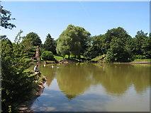 SJ3688 : Princes Park Lake by Sue Adair