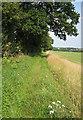 TF9723 : Footpath heading east towards Broom Green by Zorba the Geek