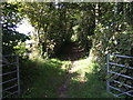 SM9500 : Bridleway north from Orielton by Jonathan Billinger