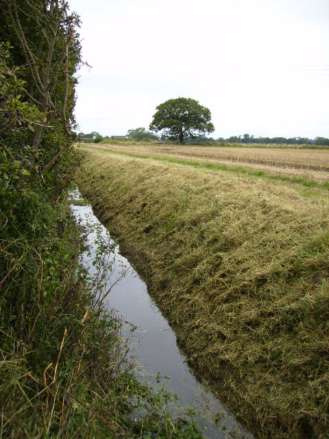 Ditch and stubble field near Lower Towthorpe