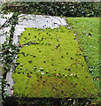 SO7225 : Moss-covered grave, St. Mary's, Newent. by Pauline E