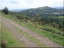 SO7641 : The Hereford Beacon viewed from Pinnacle Hill by Trevor Rickard