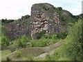 SJ2621 : Outcrops in Llanymynech limestone quarry by John Haynes