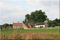 SE7365 : Kirkham Abbey by Peter Church