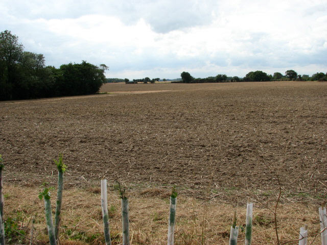 View across farmland