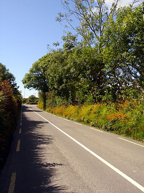 Lane near Cahersiveen