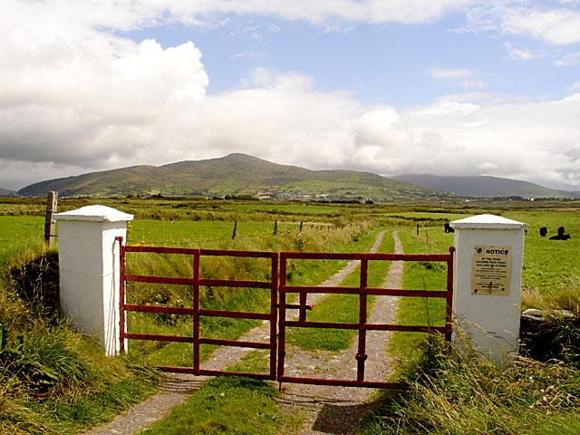 Farm Track near Ballycarbery