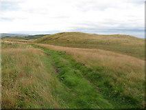 NS4875 : Cochno Hill by David Robertson