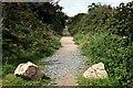 SW7139 : Bridleway near Lanner by Tony Atkin
