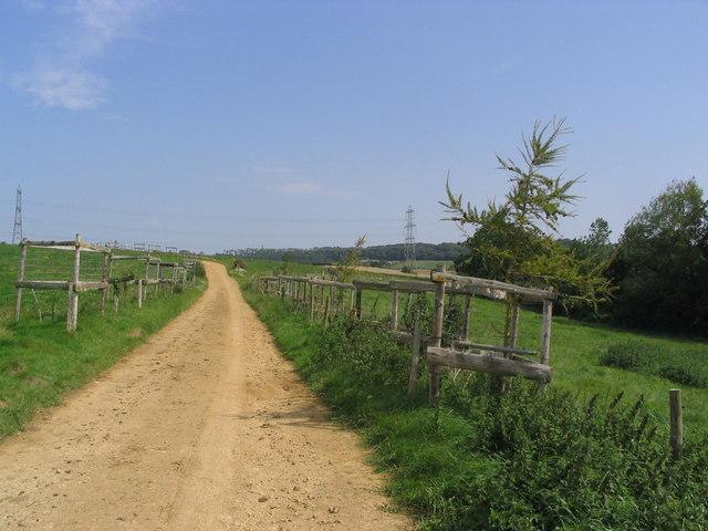Public bridleway north of Uploders