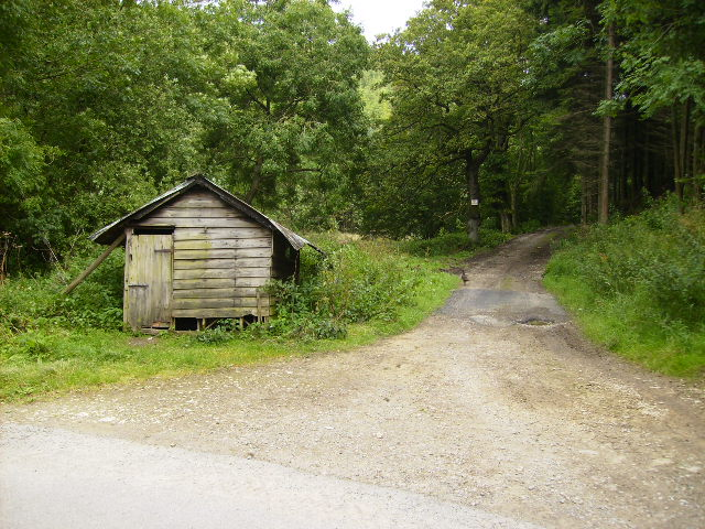 Shed at track junction in Middle Heads Wood