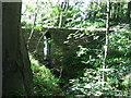 NZ0886 : Bridge over stream by Richard Dawson