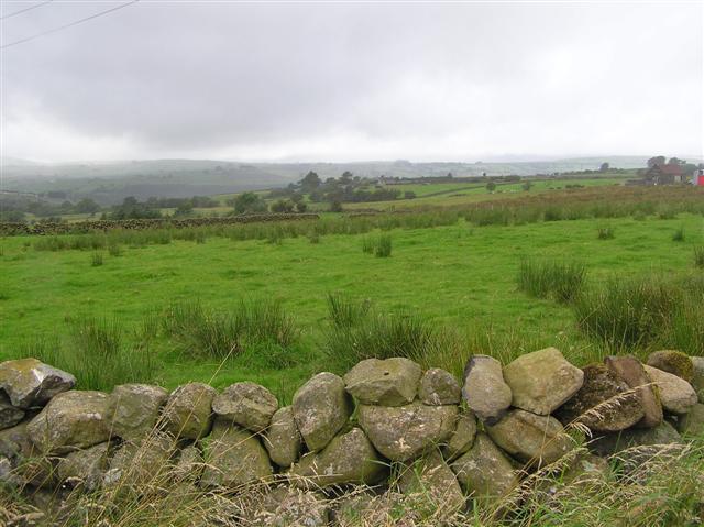 Near Craigy Hill