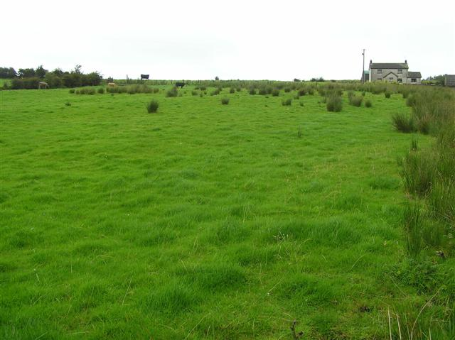 Loughduff Townland