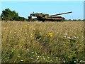 ST9248 : Another derelict tank, Imber range, Salisbury Plain by Brian Robert Marshall