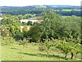 TQ1248 : White Downs Hillside by Colin Smith