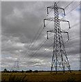 SE7028 : Pylons, pylons and more pylons. by Steve  Fareham