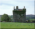 W1957 : Castles of Munster: Togher, Cork by Mike Searle