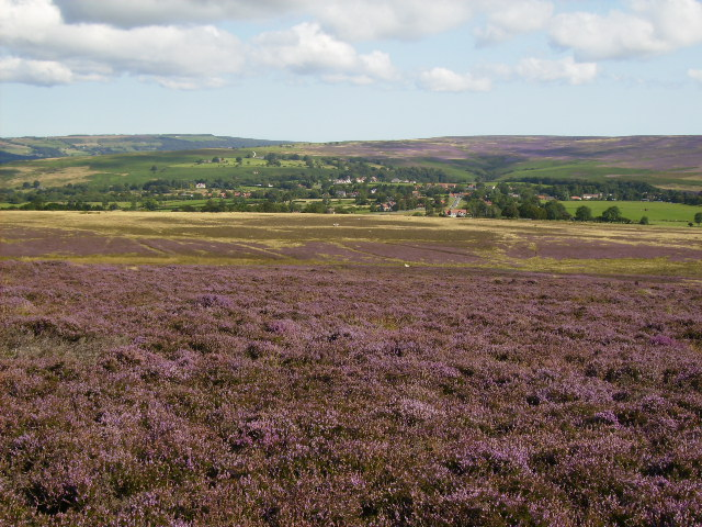 View across Two Howes Moor to Goathland