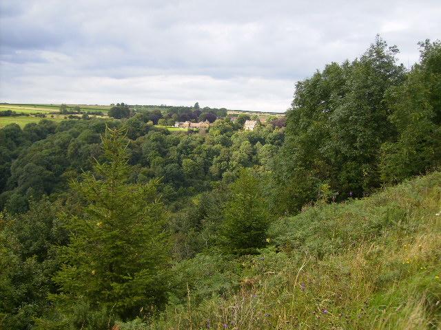 View towards Levisham across valley