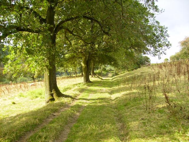 Sleights Road north of Farwath
