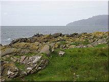 NR7103 : Cormorants on south coast of Sanda Island by Frederick Pollock