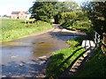 TG0530 : Water Way! by David Williams