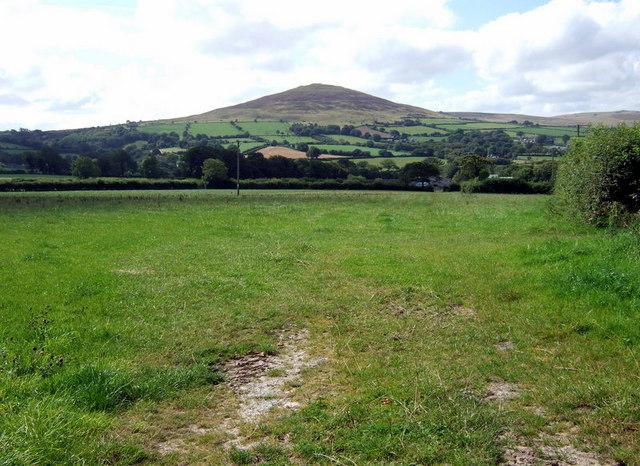 Field below Foel Drygarn