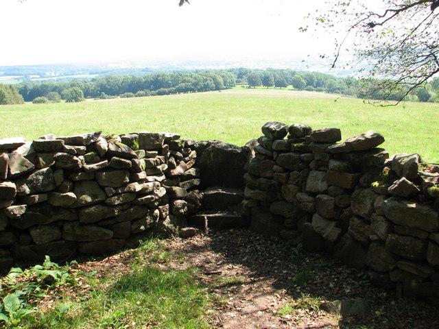 Stone stile on Gray Hill