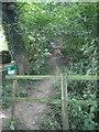 SE5017 : Footpath entrance. by Bill Henderson