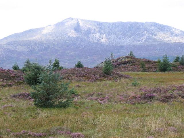 Between Penmachno and Dolwyddelan