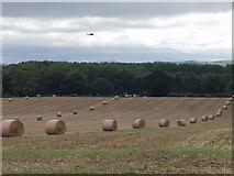 SJ3520 : Farm boy! get those bales in line by John Haynes