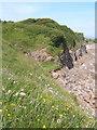 SD1878 : Near Hodbarrow Point by Andrew Hill