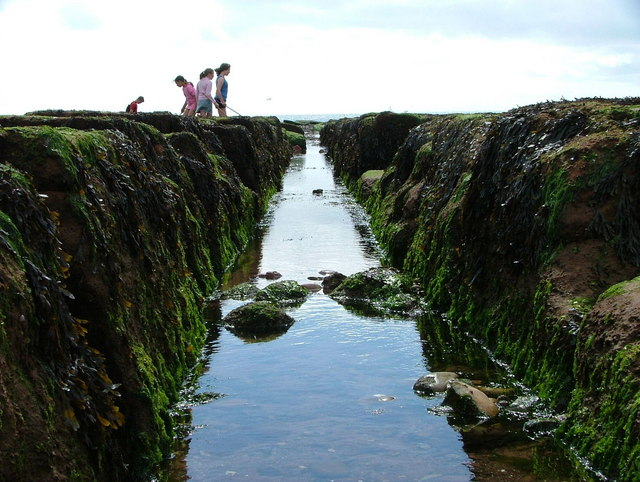 Channel through the Maer Rocks