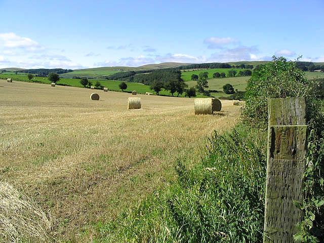 Harvest bales near Unthank Farm