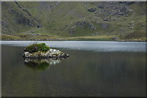 SH6459 : Small island in Llyn Idwal by Philip Halling