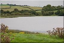 J3655 : The Dairy Lough near Ballynahinch by Albert Bridge