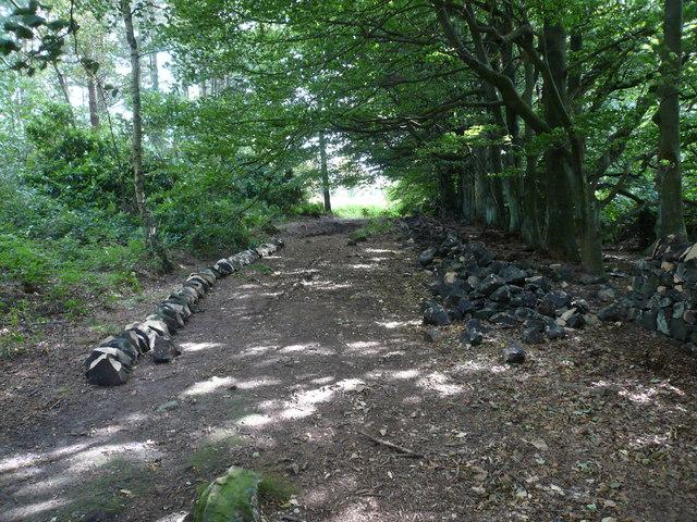 Dry Stone Wall in the process of being repaired
