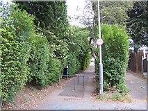SO9096 : Stoney Lane Penn by Annette Randle