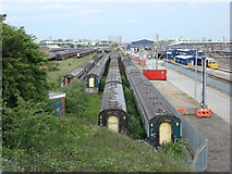 TQ2182 : Railway Sidings at Old Oak Common by Oxyman