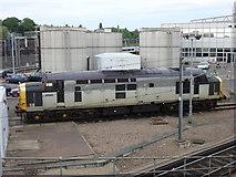 TQ2282 : Class 37 at North Pole Maintenance Depot by Oxyman
