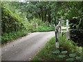 TL8395 : Bridge over the Wissey by Alison Rawson