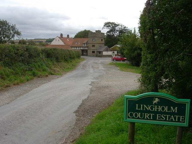 Approach road to Lingholm Farm