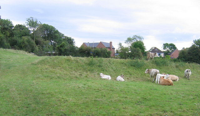 Offa's Dyke, Treflach