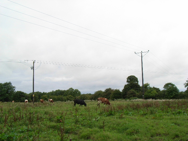 10 & 38kV Power Lines at Bellewstown