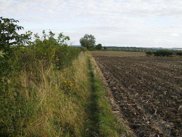 Permissive path at field side near Brambling Fields
