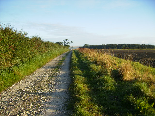 Track to Birch Plantation and The Howles