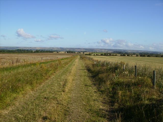 Grassy track running north east of The Snooty Fox Motel