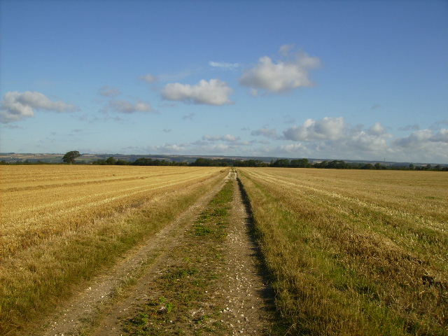 Agricultural track at East Heslerton Carr