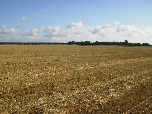 A featureless landscape on East Heslerton Carr